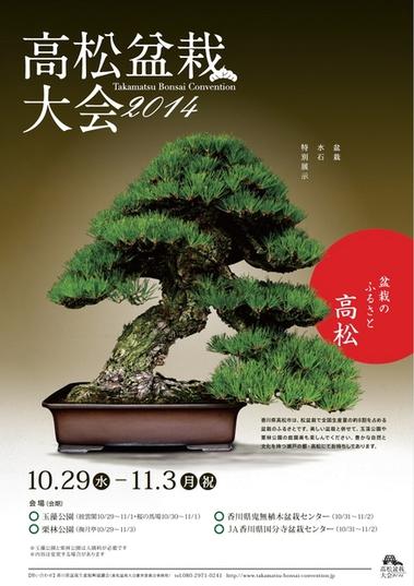 bonsai takamatsu.jpg